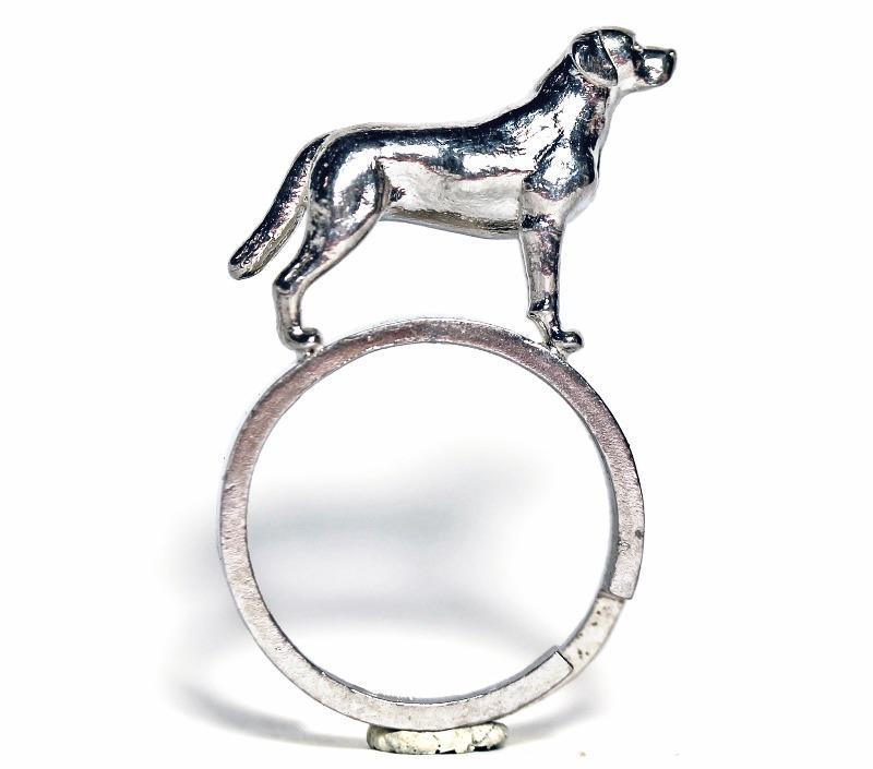 labrador-ring