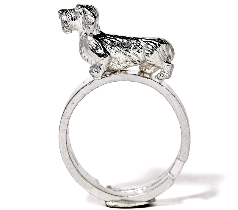 rough-haired-dachshund-ring
